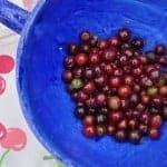 Purple Gooseberry Pie Recipe
