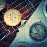 Coconoat Muffins {Dairy-Free}