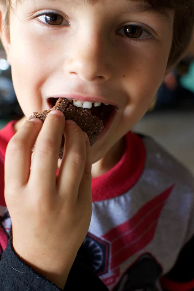 A little boy eating a chocolate cookie
