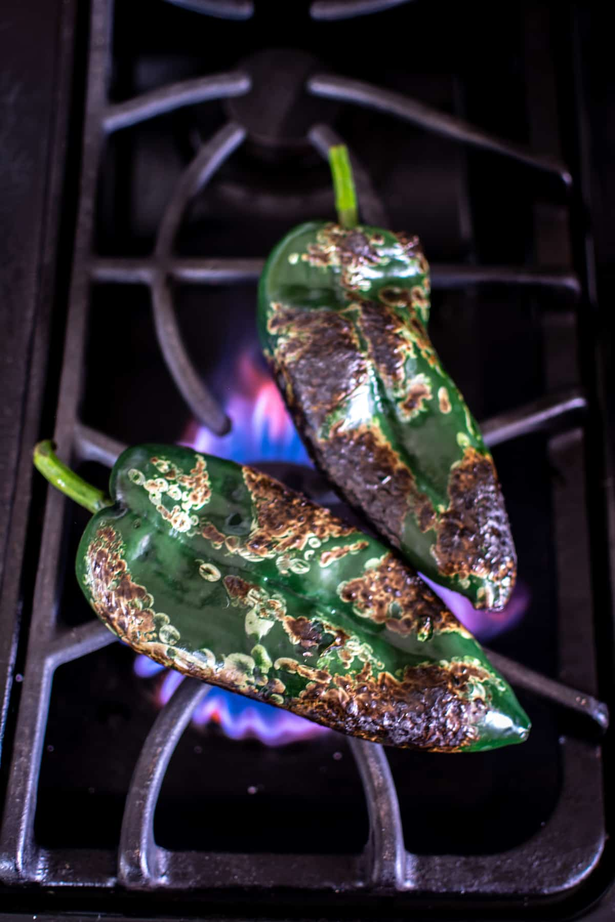 Two poblano peppers roasting over an open flame on the stove top with charred and blackened skin.
